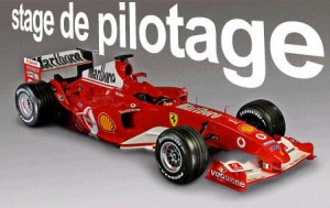 stage-de-pilotage-formule1